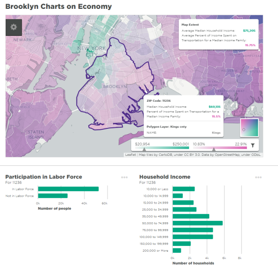 brooklyninfographic
