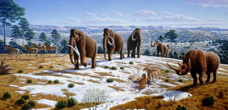The image depicts a late Pleistocene landscape in northern Spain with woolly mammoths (Mammuthus primigenius), equids, a woolly rhinoceros (Coelodonta antiquitatis), and European cave lions (Panthera leo spelaea) with a reindeer carcass.